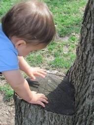 At play with Baby: an outdoor texture walk | Teach Preschool | Scoop.it