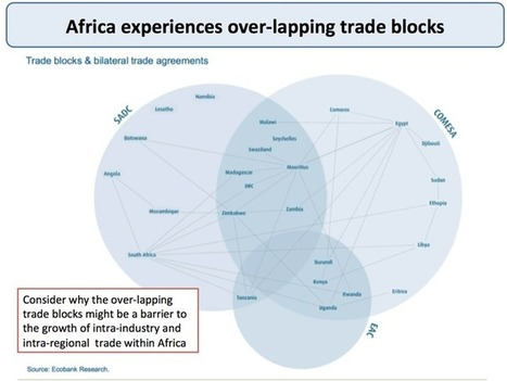 A2 Macro Pre-Release Extract 4: Globalisation - Intra Regional Trade MUST READ | Macro - AS & A2 | Scoop.it