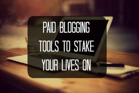 Paid Blogging Tools To Stake Your Lives On | The Perfect Storm Team | Scoop.it