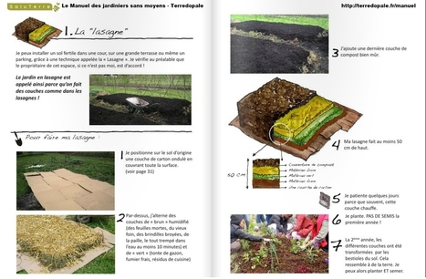Guérilla gardening France :: Tactique : Jardin en lasagne et en buttes | PIC permaculture | Scoop.it