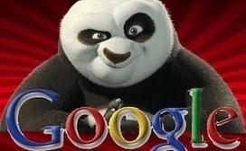 4 Steps to Panda-Proof Your Website (Before It's Too Late!) | SEO Tips, Advice, Help | Scoop.it