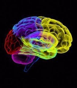 Los genes saltarines son una causa de la esquizofrenia | CMC_VivirmasVivirmejor | Scoop.it