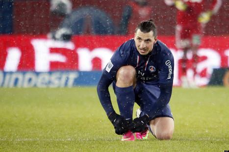 Ibrahimovic zlatané des dictionnaires français | zlatan | Scoop.it