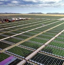 Biomasa con fines energéticos -   BIOMASA   Scoop.it