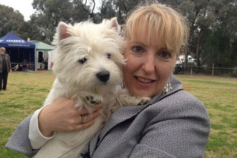 Preened pooches competing for dog show crown - ABC Online | Breaking News: Australia | Scoop.it