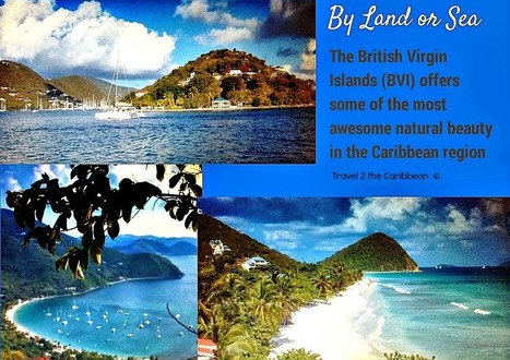 Tortola BVI Original Virgin Canopy Tour | Caribbean Islands | Scoop.it