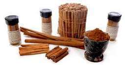 Cinnamon beats Alzheimers | Health Supreme | Scoop.it
