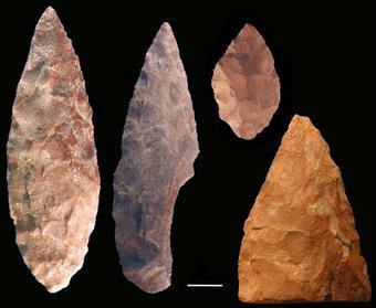 Vínculos entre el cambio climático y la evolución humana en Sudáfrica | Arqueología, Prehistoria y Antigua | Scoop.it