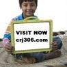 CRJ 306 ASH Course Tutorial (crj306.com)