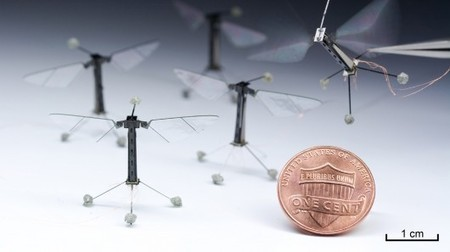 Harvard's flying robot insect can now hover and steer | Dorai on Ideas, Inventions and Innovation | Scoop.it
