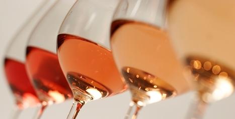 Comment la spectrométrie UV-visible permet-elle de caractériser la couleur d'un vin? | Dosage du sucre par HPLC | Scoop.it