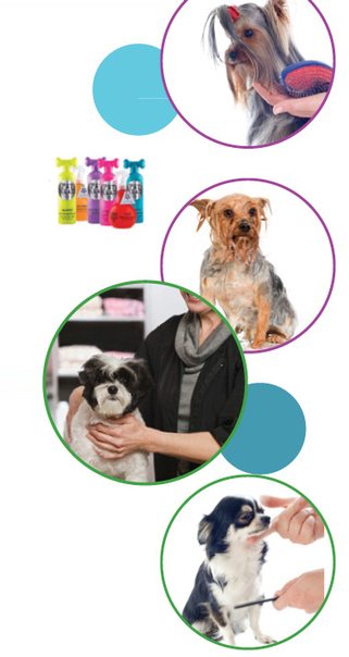 Pet Grooming Services Potton - Body Wash, Nail Clipping, De-Matting Coat | Pet Grooming Potton | Scoop.it