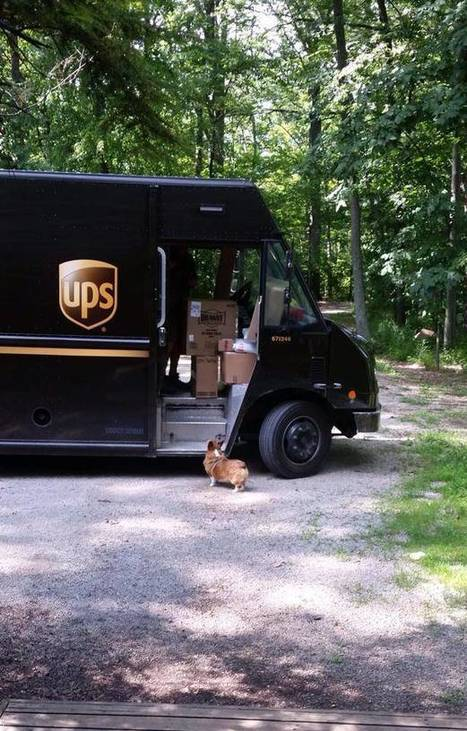 13 Things About The UPS That You'd Never Know Unless You Drove For Them | Strange days indeed... | Scoop.it