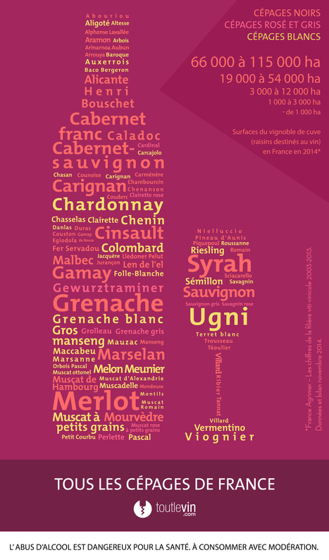 Tous les cépages de France - infographie | Wine and the City - www.wineandthecity.fr | Scoop.it