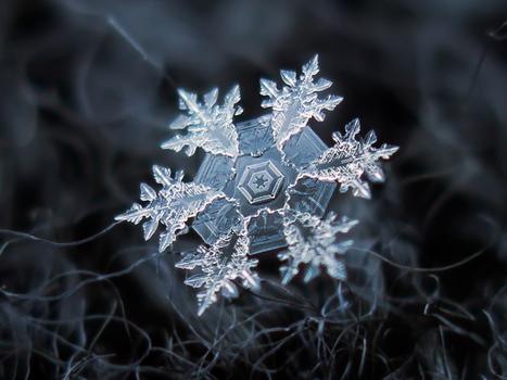 Снежинки в макрообъективе Алексея Клятова | Recalibration Photography | Scoop.it