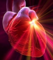 The Heart Sends More Information to the Brain Than the Brain Sends to the Heart   mental and emotional treatment by naturopathy and homeopathy   Scoop.it
