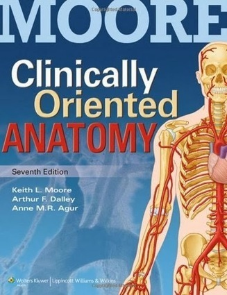 testbankdoctor@gmail.com: Test Bank Clinically Oriented Anatomy 7th Edition Moore - Agur - Dalley ISBN-10: 1451119453 ISBN-13: 978-1451119459 | Test Banks | Scoop.it