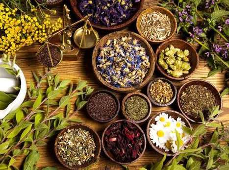 11 Herbs & Spices That Help Fight Cancer – Vitality.news | FOOD? HEALTH? DISEASE? NATURAL CURES??? | Scoop.it