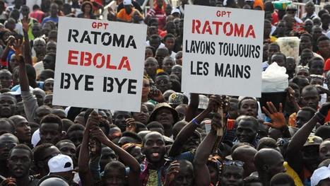 L'OMS annonce la fin de l'épidémie d'Ebola en Afrique de l'Ouest   Au hasard   Scoop.it
