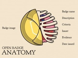 Open Badges - A new Open Standard for recognition? | e-Assessment | Scoop.it