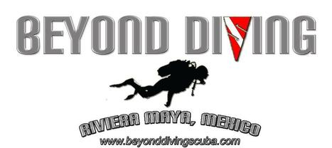 BEYOND DIVING - Special Offer | Diving Destinations | Scoop.it