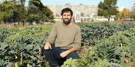 Fresh City Farms: Urban Farming In Toronto - FS Local Toronto | City farming | Scoop.it