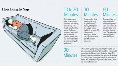Napping can Dramatically Increase Learning, Memory, Awareness, and More | Sue's snippets | Scoop.it
