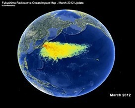 At the Very Least,Your Days of #Eating #PacificOceanFish Are #Over ~ What U haven't been told... #RainFall !!! #InternationalCrisis !!! | Rescue our Ocean's & it's species from Man's Pollution! | Scoop.it