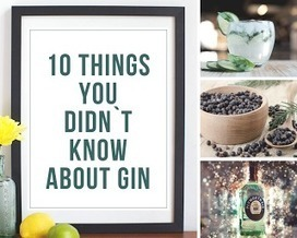 50 Shades Of Mess: 10 Things You Didn`t Know About Gin | Creative Ideas | Scoop.it