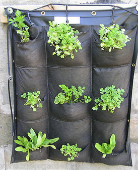 Hydroponic: Suitable Vertical Gardening Systems and ... | Wellington Aquaponics | Scoop.it