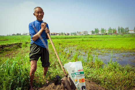 Les usines chinoises ont déjà contaminé 32 000 km2 de terres arables | Nouveaux paradigmes | Scoop.it