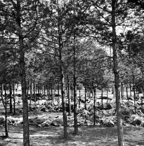 Camps, extermination de masse… Ils ont photographié l'inimaginable   MuséoPat   Scoop.it