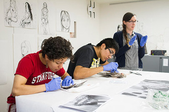 Stanford freshmen take a new approach to scientific inquiry - Stanford Report | Research Capacity-Building in Africa | Scoop.it