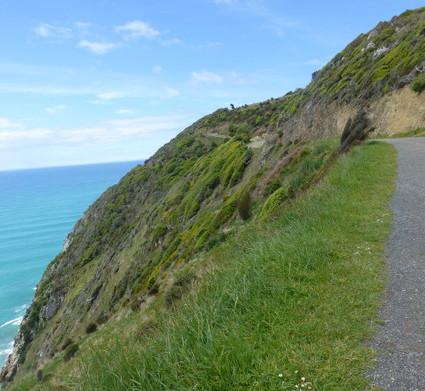 Die Catlins - im Süden Neuseelands › Weit weg Reisen   Newzealand   Scoop.it