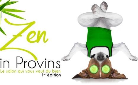 Zen in Provins, salon du bien-être | Cité médiévale de #Provins | Scoop.it