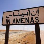 Des milices de tribus touareg gardent la frontière libyenne, inquiétant Alger | Autres Vérités | Scoop.it