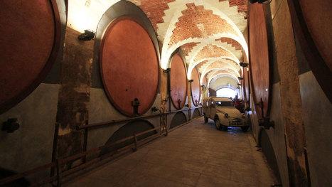 Le vin dans tous ses états   Vignes et vins   Scoop.it