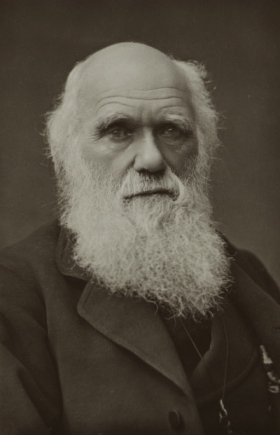 The Complete Work of Charles Darwin Online | Cultural Worldviews | Scoop.it