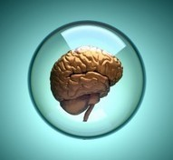 The Neuroscience of Resistance and How to Overcome It! - PsychCentral.com (blog) | Mindfullness Based Therapy | Scoop.it