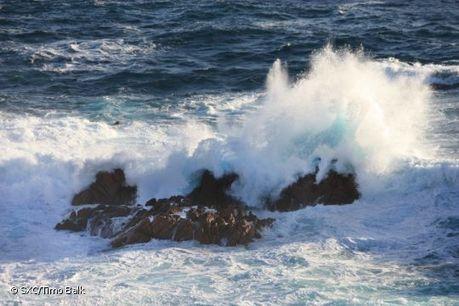 Campanha 'Açores Entre Mares 2013' começa na segunda-feira - Açoriano Oriental | Meio Ambiente em Portugal | Scoop.it