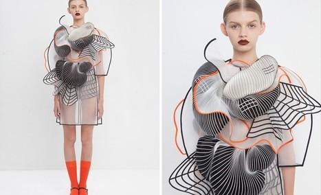 Israeli Designer Wins International Award For Stunning 3D Printed Fashion   tecnologia s sustentabilidade   Scoop.it