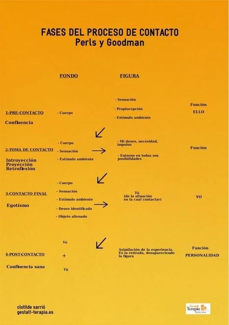 Fases del proceso de contacto en Terapia Gestalt | Terapia Gestalt Valencia | Scoop.it