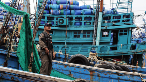 Controversy Follows Thailand's New Ranking In Human Trafficking Report | Aquaculture Directory | Scoop.it