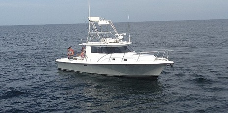 Orange Beach Fishing: Things to be questioned while hiring Gulf Shores Alabama charter boats   Orange Beach Fishing   Scoop.it