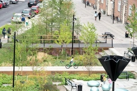 Why Copenhagen Is Building PARKS That Can Turn Into Ponds | URBANmedias | Scoop.it