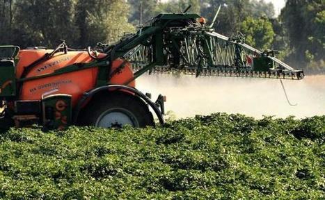 Greenpeace trace les pesticides et OGM chez nos marques préférées   Chimie verte et agroécologie   Scoop.it