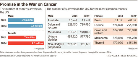 The Future of Cancer: Closer to a Cure | Realms of Healthcare and Business | Scoop.it