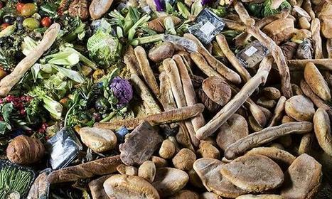 Food waste: national campaign aims to stop the rot by 2020   Food Science and Technology   Scoop.it