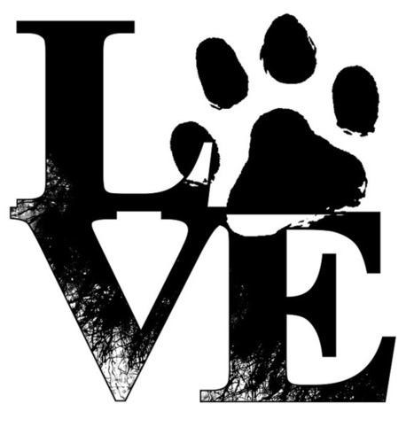 Carbon Paw Prints : Helping the Environment   Animal Bliss   Animal Welfare   Scoop.it