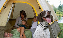 5 Tips for Buying Family Camping Tents | Camping Tips and Ideas | Scoop.it